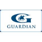 guardian-russia